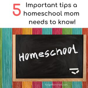 5 important tips a homeschool mom needs to know