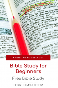 Bible Study for Beginners Plus A Free Bible Lesson