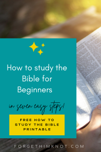 7 Easy Ways to Beginner Bible Study- Step by Step Guide