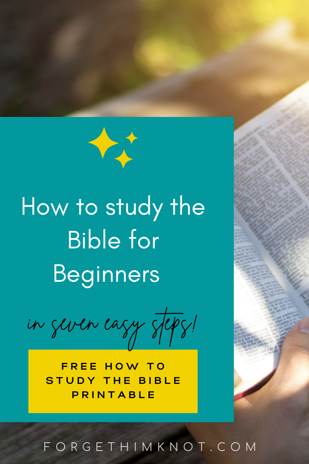 How to study the Bible for Beginners Pinterest Pin